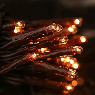4 Sets of 35 Count Teeny Clear Bulb Brown String Lights for Indoor Decor and Embellishing