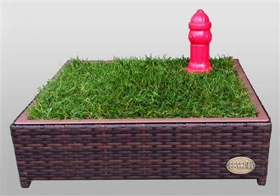 "Porch Potty Small, Outer Dimensions 26"" x 26"" x 6"", Grass Area 4 Square Feet (2' x 2')"