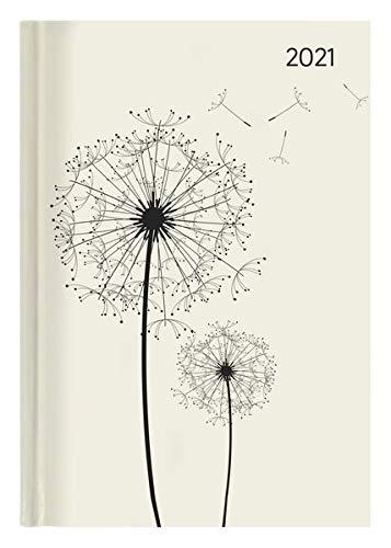 Buchkalender Style Blowballs 2021 - Büro-Kalender A5 - Cheftimer - 1 Tag 1 Seite - 352 Seiten - Pusteblume - Alpha Edition