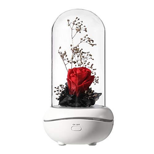 Bella y la bestia rosa, fragancia preservada de flores de rosas para siempre, lámpara portátil recargable USB difusor de aroma (rojo)