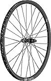 DT Swiss WHDTXRC122503R - Pieza para Bicicleta (29 x 25 mm, Parte Trasera)