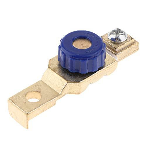 perfk Motorradbatterie Schalter Schutz der Autobatterie Trennschalter 80A, 63 x 20 mm
