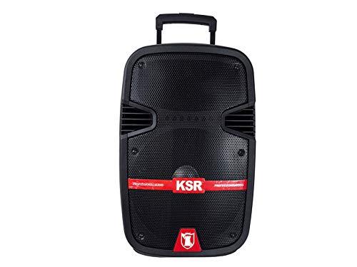 """Kaiser Bafle Amplificado de 12"""" con 40 W RMS/13600W PMPO"""