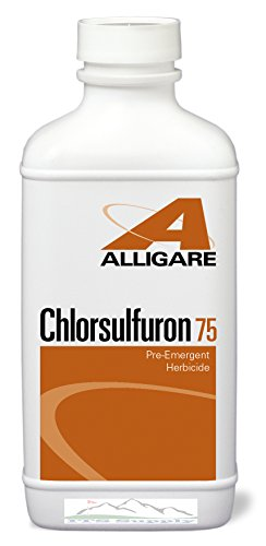 Chlorsulfuron 75 WDG Herbicide 8 ounce bottle replaces Telar XP