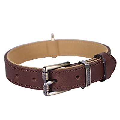 Tellpet Italy Full-Grain Leather Padded Dog Collar, Brown, X-Small