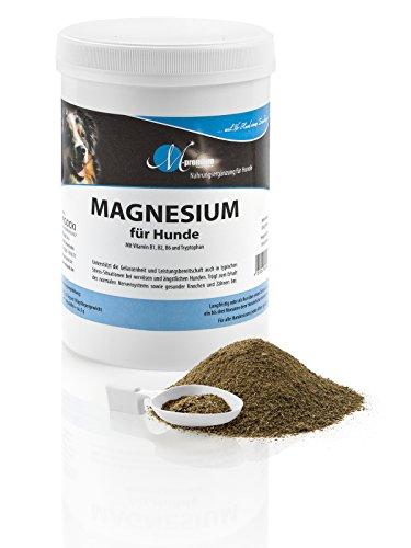 MIGOCKI Magnesium – 500 g – Premium Ergänzungsfuttermittel für Hunde – Unterstützung des gesunden Nervensystems für mehr Gelassenheit, fördert einen lockeren Muskeltonus, gesunde Knochen und Zähne