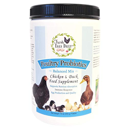 Fresh Eggs Daily Poultry Probiotics Chicken and Duck Feed Supplement 1LB