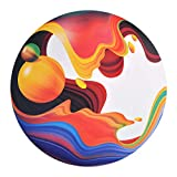 Waboba- Wingman Flying Disc, Modern Art