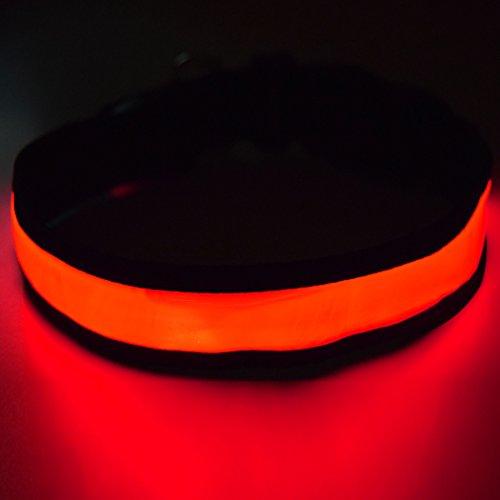 """Fun Pets Hundesicherheitshalsband mit ultraheller, wiederaufladbarer LED mit hervorragender Sichtbarkeit und erhöhter Sicherheit Medium (40cm - 50cm / 15.7"""" - 19.7"""") Rot"""