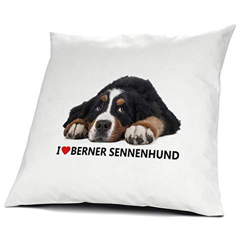printplanet® Kopfkissen Berner Sennenhund, Kissen mit Füllung I Love Berner Sennenhund, 40 cm, 100% Baumwolle