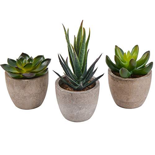 Zalava 3 Stück Künstliche Sukkulenten Pflanzen, Künstliche Pflanzen mit Topf Kunstpflanze klein für Tisch Haus Balkon Büro Deko