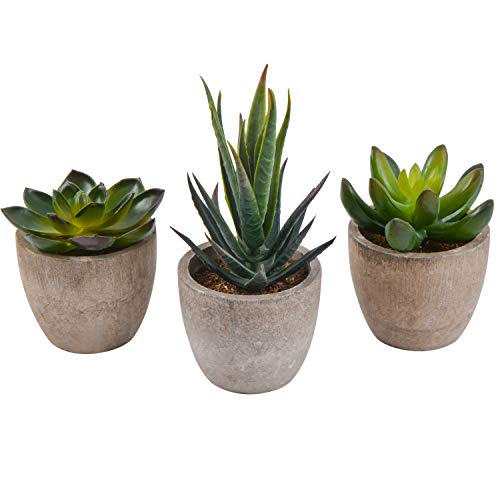 Zalava 3 Stück Künstliche Sukkulenten Pflanzen Kunstpflanze Künstliche Pflanzen mit Topf für Tisch Haus Balkon Büro Deko