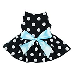 Easter Outfits For Dogs - Polka dot dress with blue satin ribbon for dogs.