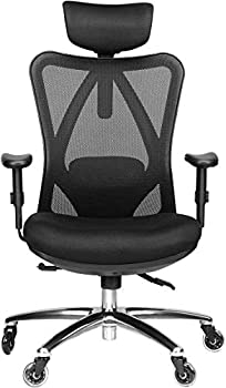 Duramont Ergonomic Office Chair - Adjustable Desk Chair with Lumbar Support and Rollerblade Wheels - High Back Chairs with Breathable Mesh - Thick Seat Cushion Head and Arm Rests - Reclines
