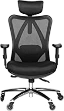 Duramont Ergonomic Office Chair - Adjustable Desk Chair with Lumbar Support and Rollerblade Wheels - High Back Chairs with Breathable Mesh - Thick Seat Cushion, Head, and Arm Rests - Reclines