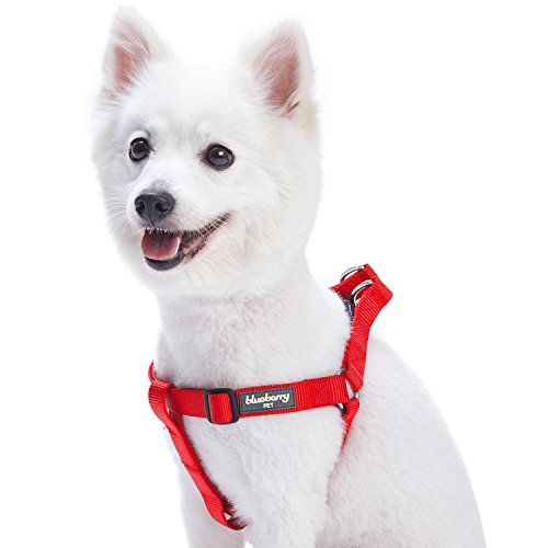 Blueberry Pet Essentials 21 Colors Step-in Classic Dog Harness, Chest Girth 16.5