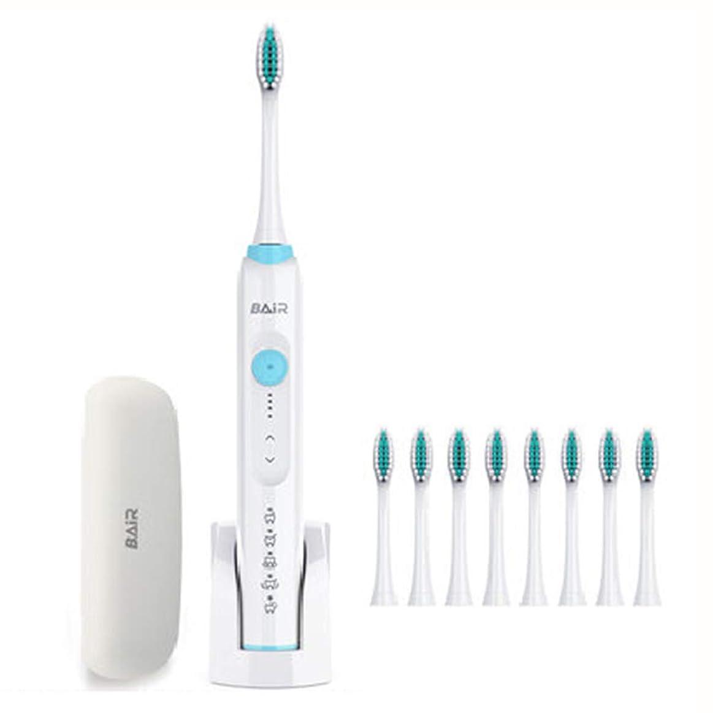 かる耐えられる化学者電動歯ブラシソニック歯ブラシ歯のようなきれいな歯充電式4時間充電最小30日防水8交換用ヘッド,Pink