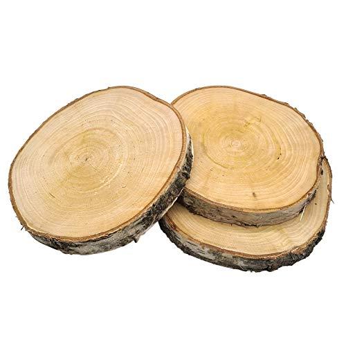 Birkenprofis Scheiben 3er Set | Birkenscheiben | Holzscheiben | ca. 15cm Durchmesser | naturbelassenes Holz