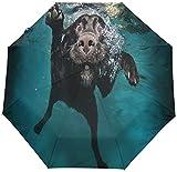 Paraguas automático divertido perro bajo el agua a prueba de viento, encantador cachorro viaje sol lluvia al aire libre paraguas