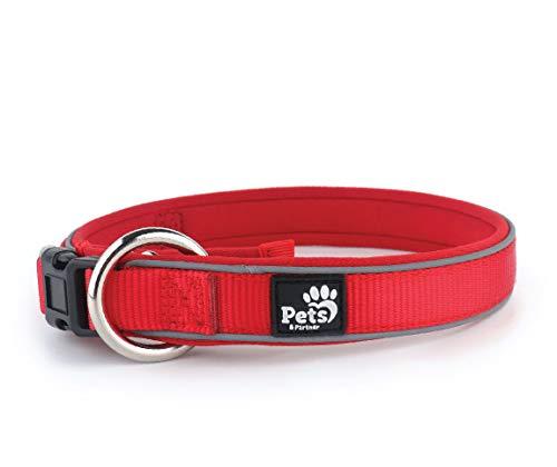 Pets&Partner® Hundehalsband aus Neopren, reflektierendes Halsband in verschiedenen Farben für große und kleine Hunde XS 22-30 x 2,3 cm Rot