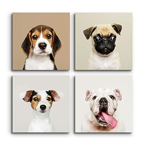 DON LETRA Set de 4 Cuadros Perros en Lienzo para Decoración de Salón y Dormitorio, 40 x 40 cm, Lienzo 100% Poliéster con Bastidor de Madera, Impresión HD Multicolor, LZ-047