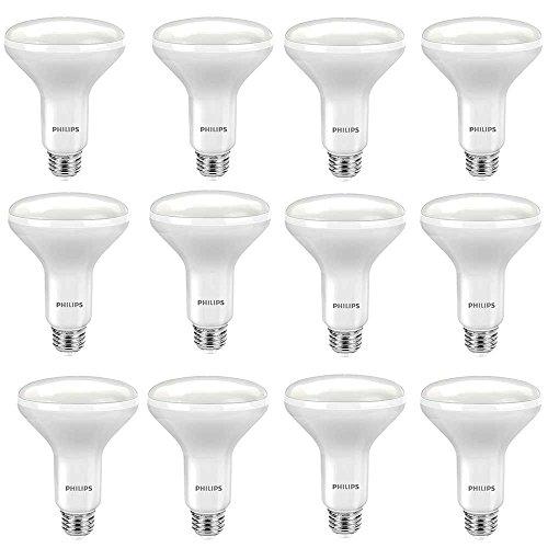 Philips LED BR30 Dimmable 650-Lumen, 5000-Kelvin, 9-Watt (65-Watt Equivalent) Flood Light Bulb with E26 Medium Base, Daylight, 12-Pack