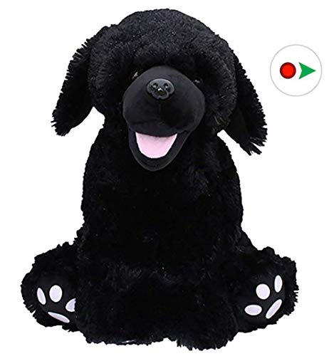 Beary Fun Friends Recordable 16' Plush Shadow The Black Labrador w/20 Second Digital Recorder for Special Messages, Rymes or Songs