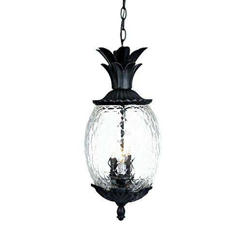 Acclaim 7516BK Lanai Collection 3-Light Outdoor Light Fixture Hanging Lantern, Matte Black