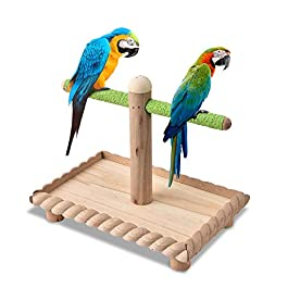 HEEPDD Bird Perch, Natural Wood T Shape Stand Perch with Tray Parrot Standing Bar Training Toy for Parakeet Budgies African Grey Cockatiel Cockatoo Lovebirds