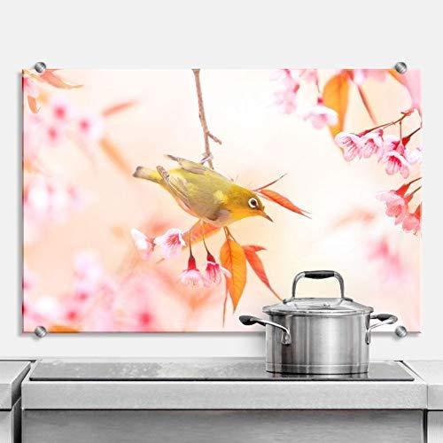 Spatscherm Keuken - Vogeltje in de Lente - Hittebestendig Glazen Spatwand inclusief Luxe Wandklemmen - 60x40 cm (bxh)