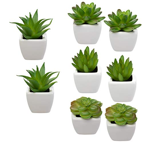 Home Trends Set of 8 Green Succulents Artificial, Mini Succulent Plants, Faux Succulents Potted in White Ceramic Pots