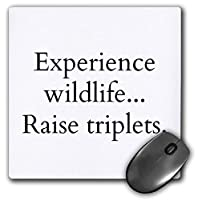 3dRose Mouse Pad Experience Wildlife Raise Triplets, 8 x 8' (mp_261263_1) [並行輸入品]