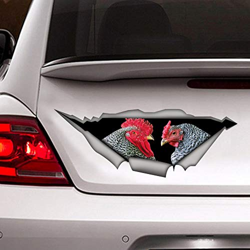Lplpol Dominique Chickens 3D Car Sticker Wall Mural Decal, Dominique Rooster Sticker, Animal Decal, Funny Vinyl Decal for Truck Van Wall Laptop Window Decor, 20 Inch