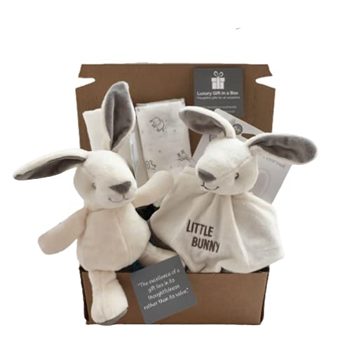 """""""Welcome Baby"""" Bunny Gift Box, Cuddly Bunny, Bunny Comforter, Cotton..."""