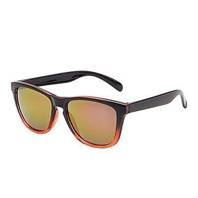 Mirrored Reflective Wayfarer Sunglasses Original Lightweight Men Women UV400