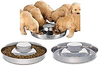 Best puppy weaning dish Reviews