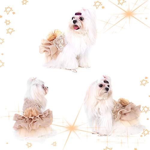 Garosa Vestido De Perro para Mascotas Ropa para Perros Pequeños Lentejuelas Tiquín Sedoso Disfraz De Perrito Princesa Elegante Falda Traje De Boda(XL-Beige)