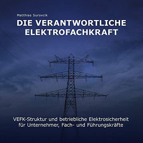 Die verantwortliche Elektrofachkraft Titelbild