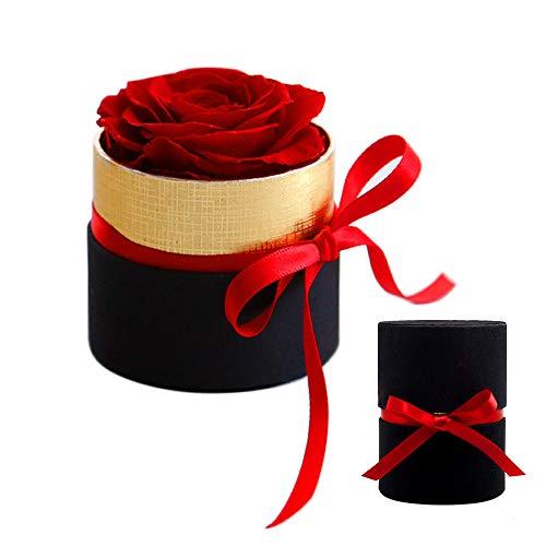 Gobesty Ewige Rosen Box, 1 Stück Rosen Die Ewig Halten Echte Rosen in Box haltbar für Frau Freundin Oma/Valentinstag/Muttertag/Geburtstag/Hochzeitstag/Jahrestag(Runde Schwarze Box, Rot Rose)