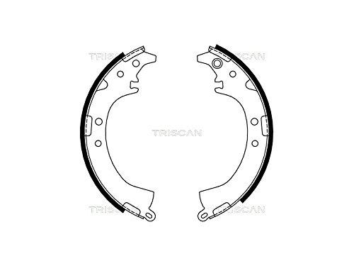 Preisvergleich Produktbild Triscan 8100 13569 Bremsbackensatz
