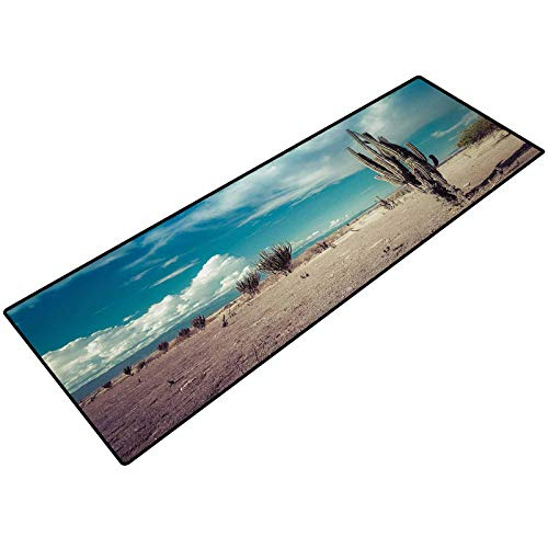 Cactus Bathroom Rug Abandoned Desert with Dried Cactus Flowers on a Sunny Hot Summer Day Photo Image Bathroom mats Bath Rugs Doormats Carpet 18x47 Inch Multicolor