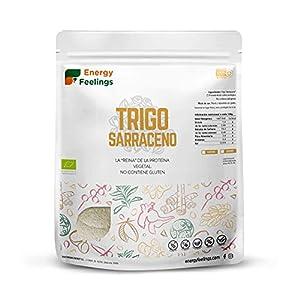 Energy Feelings | Harina De Trigo Sarraceno Ecológica | Harina Integral Sin Gluten | Fácil Digestión - 1,2 Kg