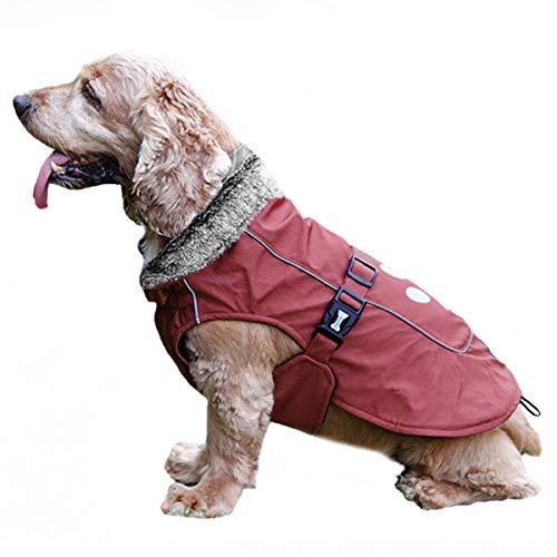 TFENG Reflektierend Hundejacke für Hunde, Wasserdicht Hundemantel mit Warm Pelzkragen, Weste Welpen Regenmantel, (Rot, Größe S)