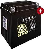 YB30L-B TECNO GEL-Batterie für FLHTCUI 1450 EFI Elektra Glide Ultra Classic Baujahr 1999-2006