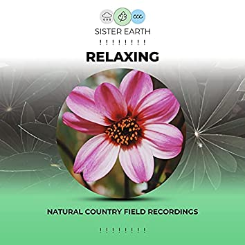 ! ! ! ! ! ! ! ! Relaxing Natural Country Field Recordings ! ! ! ! ! ! ! !