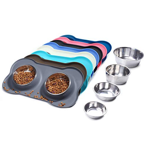 Best Dog Food and Water Bowl
