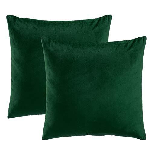 eletecpro Kissenbezug 50x50cm, 2er Set Samt Kissenhülle mit Verstecktem Reißverschluss, Grün Zierkissenbezüge für Sofa und Terrasse Wohnzimmer,Schlafzimmer, Büro in großer Farb- Größenauswahl