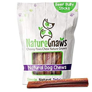 Nature Gnaws Jumbo Bully Sticks for Large Dogs – Premium Natural Beef Bones – Thick Long Lasting Dog Chew Treats for Aggressive Chewers – Rawhide Free – 6 Inch (6 Count)