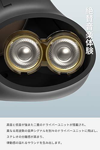 SOUNDPEATS(サウンドピーツ) Truengine 3SE ワイヤレスイヤホン 【高音質二重ドライバー使用 / aptX AACコーデック対応 /安定性向上したTWS Plus対応 / Type-C充電対応 / クリア通話 / 長時間再生 / 快適な装着感 / IPX5防水】 フルワイヤレス イヤホン 自動ペアリング 小型 Bluetooth イヤホン スポーツイヤホン Bluetooth5.0 [実用新案登録済み、技適認証取得、メーカー1年保証] (ブラック)