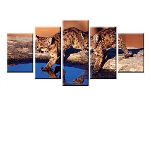 WJWORLD HD druk canvas schilderij 5 panelen 2 leuke katjes spelen water poster muurkunst voor kinderkamer muurschildering Kerstmis 30x40cmx2,30x60cmx2,30x80cmx1 Frameloos